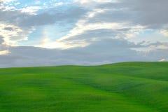 Grüne Hügel mit grünen Wiesen in Val d 'Orcia, Toskana lizenzfreie stockfotos