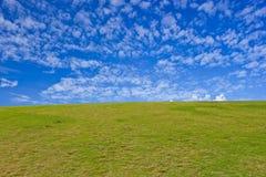 Grüne Hügel und blauer Himmel Stockfotos