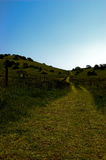 Grüne Hügel und blauer Himmel Stockfotografie