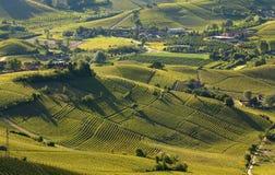 Grüne Hügel und Weinberge von Piemont am frühen Morgen in Italien. Lizenzfreie Stockfotos