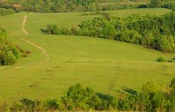 Grüne Hügel und Wiese mit Straße Stockbild