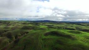 Grüne Hügel und Wiesen vom Hubschrauber stock video