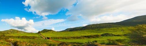 Grüne Hügel unter einem blauen Himmel mit weichen Wolken stockbilder