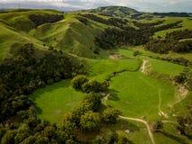 Grüne Hügel von Neuseeland bei Sonnenuntergang Lizenzfreie Stockfotografie