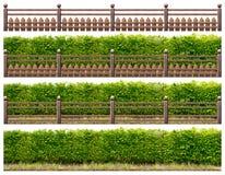 Grüne Hecke mit Bretterzaun stockbild