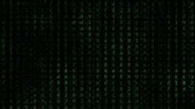 Grüne hexadezimale Symbole, die gegen schwarzen Bildschirm blitzen Programmierung, zerhackend oder Computertechnologie bezogen Stockfoto