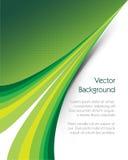 Grüne Hintergrund-Broschüre Stockfoto