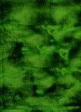 Grüne Hintergrundbeschaffenheit Stockfotos