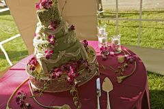 Grüne Hochzeitstorte in einem Zelt Stockfotos