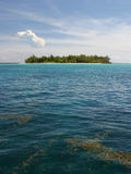 Grüne Insel. Lizenzfreie Stockfotos