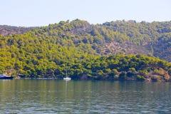 Grüne Insel Stockbilder