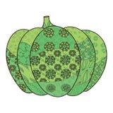 Grüne Kürbisillustration Stockfotografie