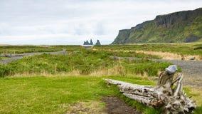 grüne Küste in Dorf Vik I Myrdal in Island Lizenzfreie Stockfotos