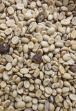 Grüne Kaffeebohnen Stockfoto