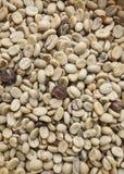 Grüne Kaffeebohnen Lizenzfreies Stockfoto