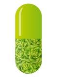 Grüne Kapsel mit Salat vektor abbildung