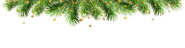 Grüne Kiefernzweige und goldene Konfettis für Weihnachtsspitzengrenze Stockbild