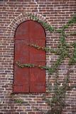 Grüne kletternde Reben auf Wand des roten Backsteins mit einzigartig geformtem Fenster Stockfotografie
