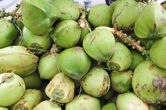 Grüne Kokosnüsse Lizenzfreie Stockbilder