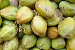 Grüne Kokosnüsse für Verkauf Stockbild