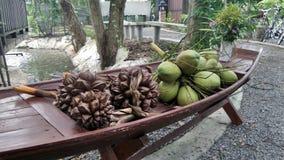 Grüne Kokosnuss- und Nipah-Palme im hölzernen Boot stockfoto