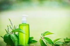 Grüne kosmetische Produktflasche für Haut, Körper oder Haarpflege mit Grün verlässt am grünen Naturhintergrund, Vorderansicht Nat Stockfotos