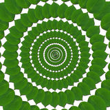 Grüne Kreise von den Blättern Lizenzfreie Stockfotos