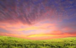 Grüne Landschaft Lizenzfreies Stockbild