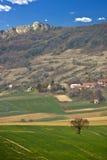 Grüne Landschaft des Frühjahrs - Wiese und Berg Lizenzfreies Stockbild
