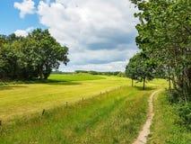 Grüne Landschaft entlang dem Fluss das Vecht mit schönen bewölkten Himmeln in Overijsel, die Niederlande stockfoto