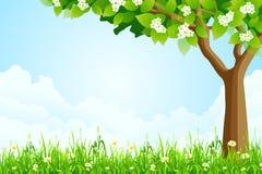 Grüne Landschaft mit Baum Lizenzfreies Stockfoto