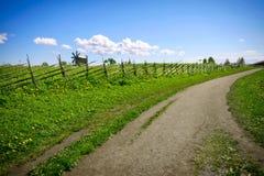 Grüne Landschaft mit blauem Himmel Stockfotos
