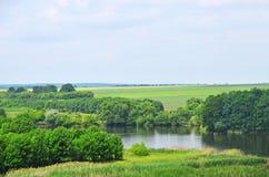 Grüne Landschaft mit Fluss und Baum Stockfotografie