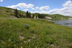 Grüne Landschaft mit See Stockfotografie