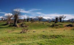 Grüne Landschaft - Spanien Lizenzfreies Stockbild