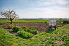 Grüne Landschaft und ländliches Ackerland im Frühjahr Stockfotos