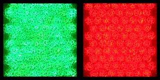 Grüne Leuchte, rote Leuchte Stockfotos