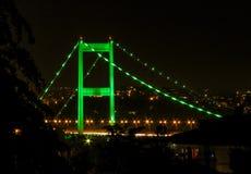 Grüne Lichter über der Brücke lizenzfreie stockbilder