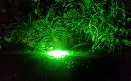 Grüne Lichter stockfotos