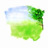 Grüne Lichtung Stockfotos