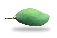 Grüne Mango Lizenzfreies Stockbild