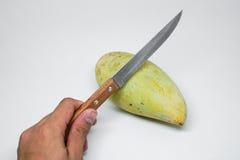 Grüne Mango, bevor abgezogen werden Lizenzfreie Stockfotografie
