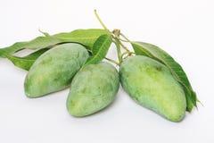 Grüne Mangofrüchte, Thailand. Stockfoto