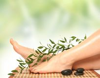 Grüne Massage Stockfotos