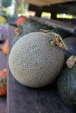 Grüne Melone Stockbild