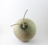 Grüne Melone lokalisiert auf weißem Hintergrund Stockfotografie