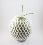 Grüne Melone mit dem Schaumnetz lokalisiert auf weißem Hintergrund Lizenzfreies Stockbild