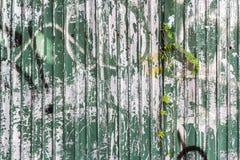 Grüne Metallplatte mit Anlagen Stockbild