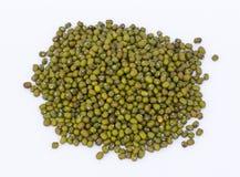 Grüne Mungobohnen Lizenzfreie Stockfotos