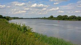 Grüne natürliche Grenzen von Fluss Schelde, Flandern Stockfotografie